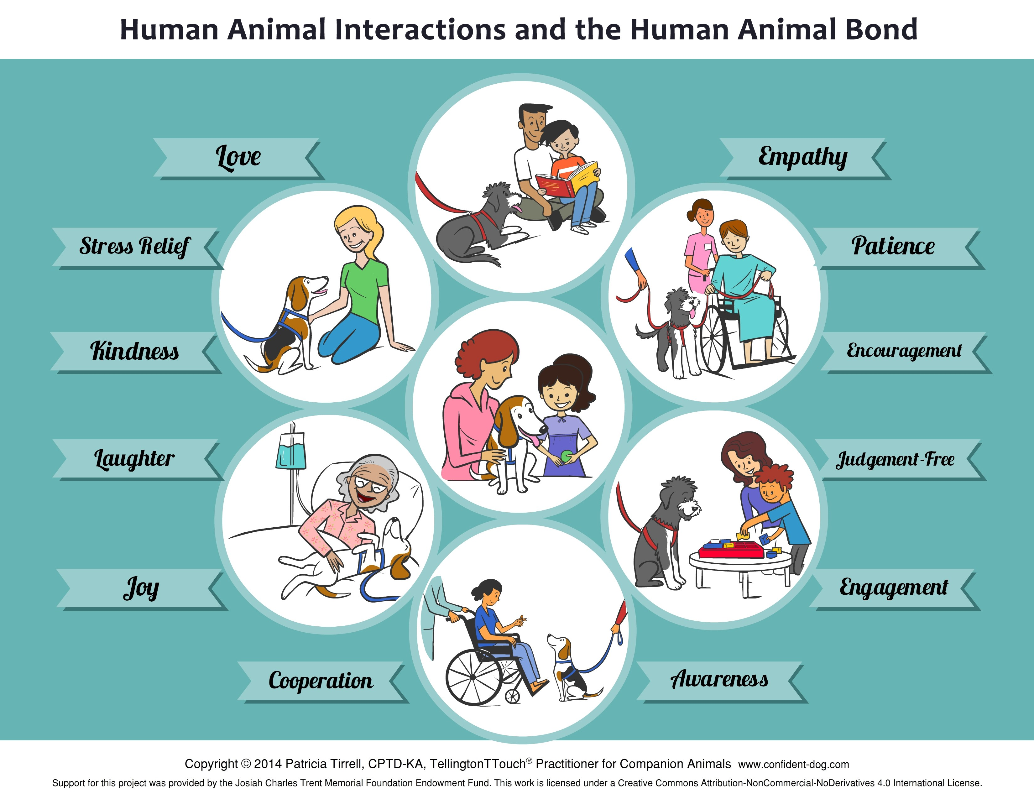 """Animal-Assisted Therapy - """"Best in Dallas"""" - D Magazine"""